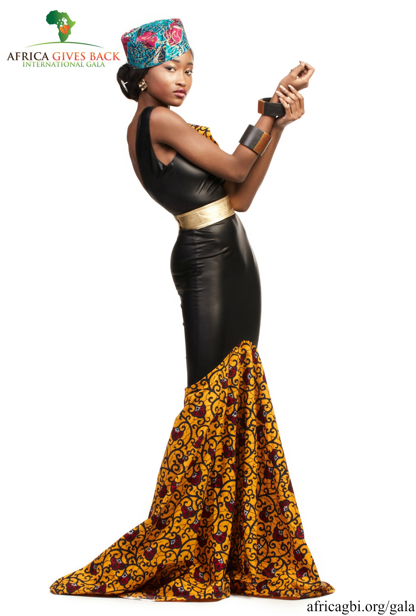 Africa Gives Back Int'l Gala Campaign 2015 3
